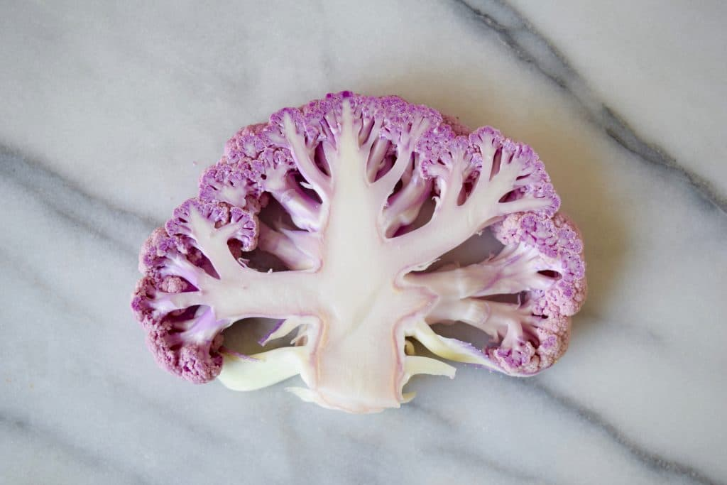 Purple Cauliflower Maria Marlowe