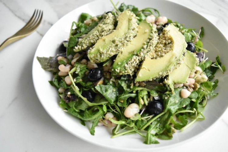 Spicy Blueberry Salad with Hemp Avocado