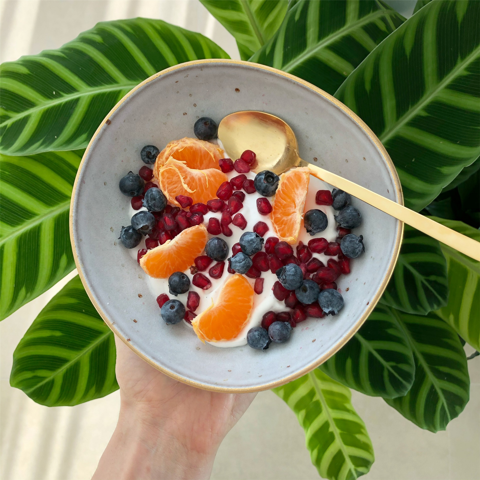 Nutritionist-Approved Healthy Snacks -Yogurt